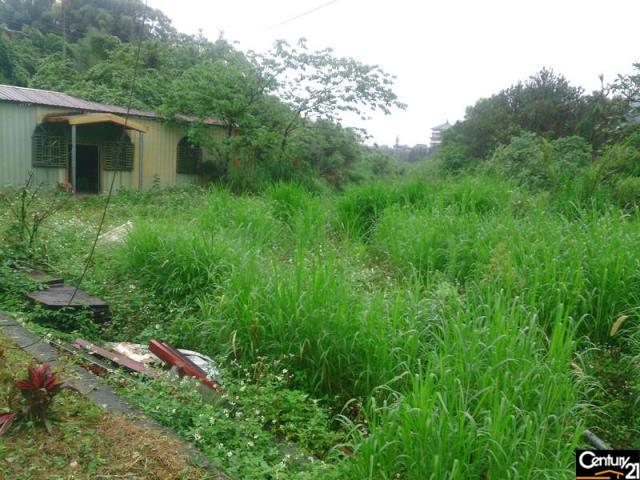 大溪三層農地