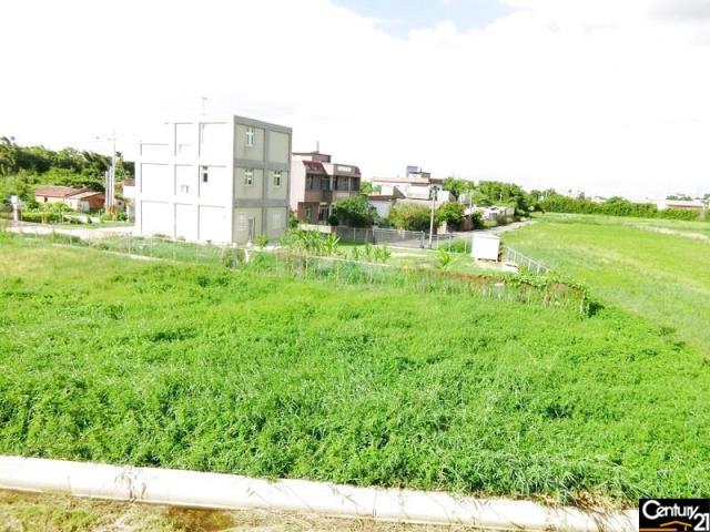 向陽農場合法農舍