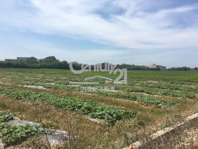 新湖國中農地1068坪