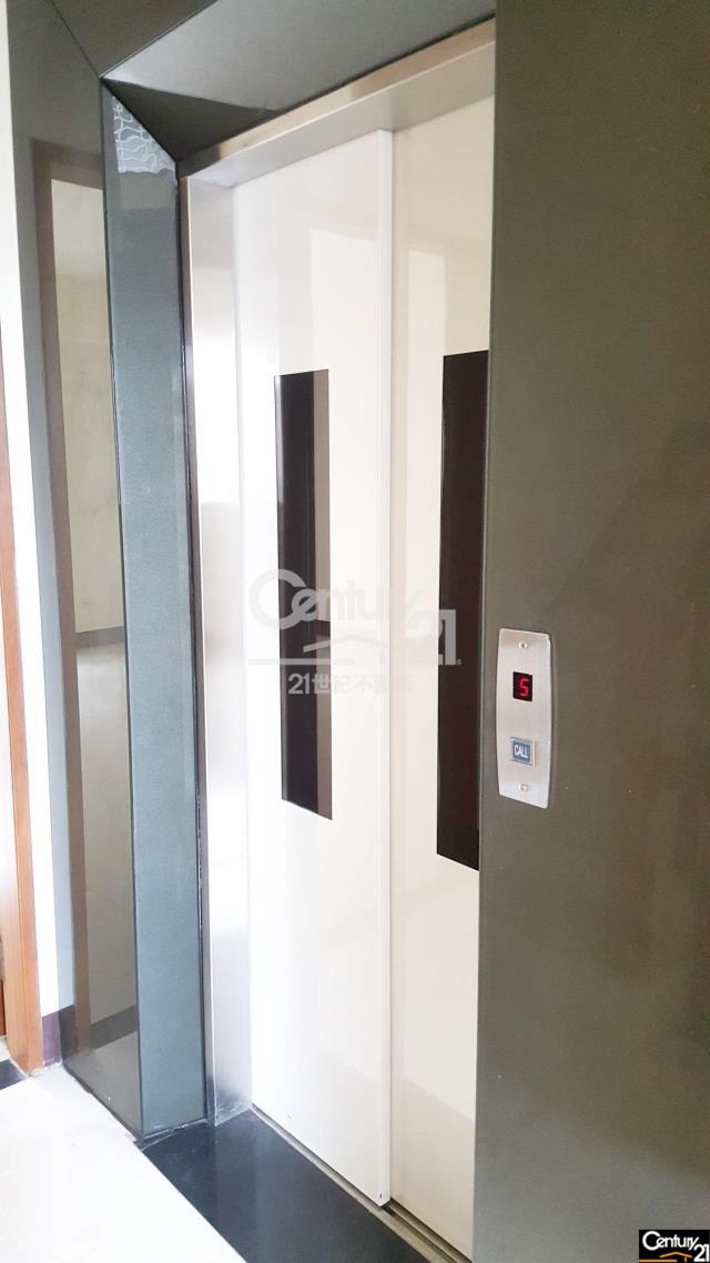 平鎮國中全新電梯大別墅-4車庫