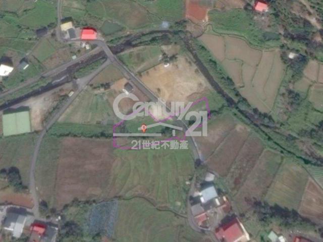 大屯桂竹圍農地