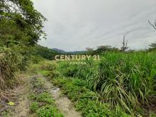 買屋、賣屋、房屋買賣都找21世紀不動產– GC065大同玉蘭茶園景觀農地–宜蘭縣大同鄉松羅段