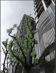 買屋、賣屋、房屋買賣都找21世紀不動產– 樹幸福漂亮四房平車–台中市太平區育仁路