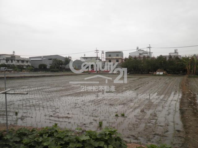 霧峰北柳段農地