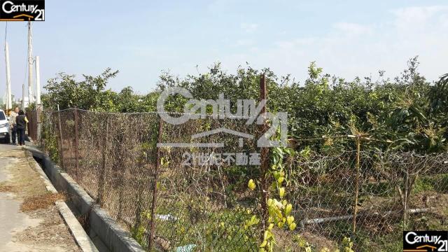 買屋、賣屋、房屋買賣都找21世紀不動產–南科特定D區農地-台南市安定區蘇厝段