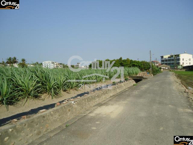 善化糖廠旁朝南漂亮農地