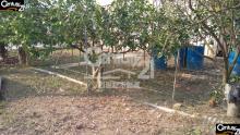 買屋、賣屋、房屋買賣都找21世紀不動產– 麻豆2.5分柚子園–台南市麻豆區安業段