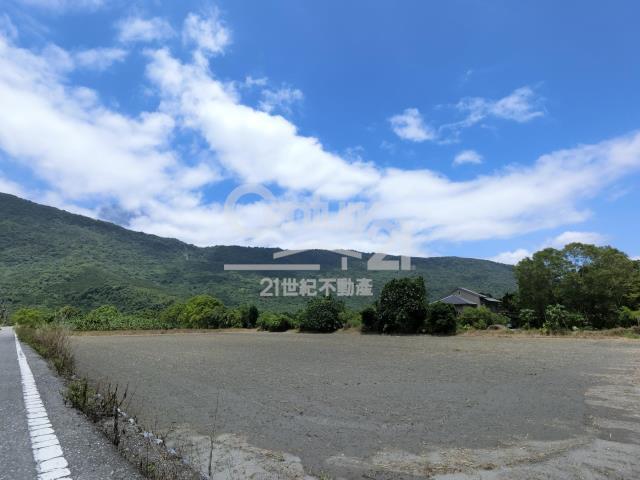 F495壽豐豐山農地